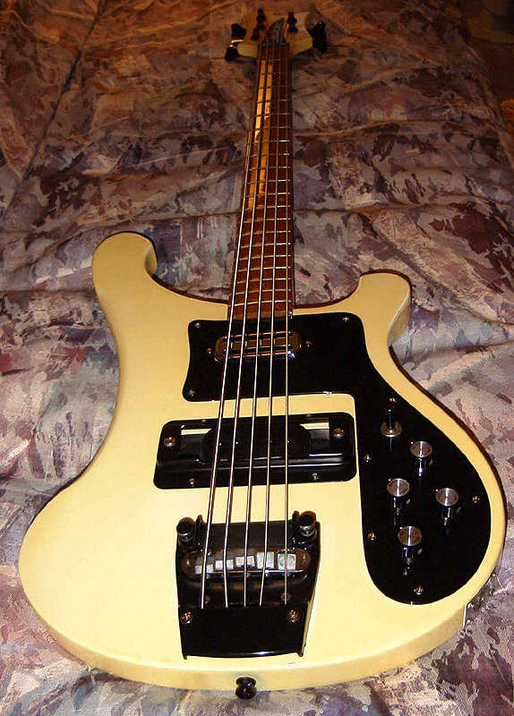 5 string bass guitar